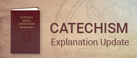 Catechism update