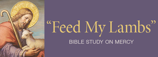 A free Bible study on mercy is available from The Lutheran Church—Missouri Synod for use in home, school or church settings.